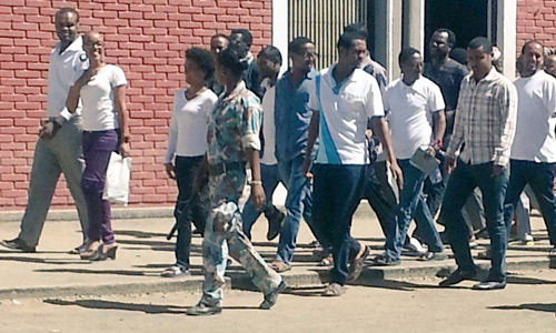 freezone9bloggers (1)